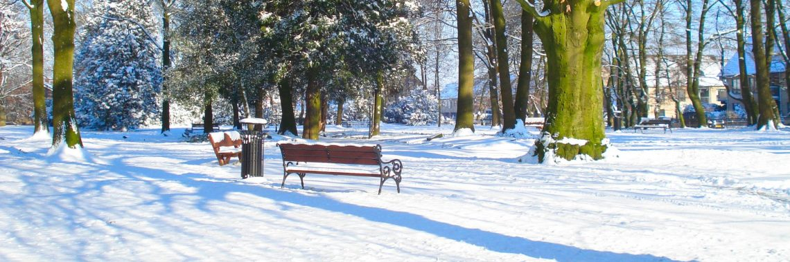 Begraafplaats onder de sneeuw in de winter van 2012